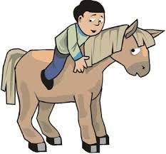 pony facts kids