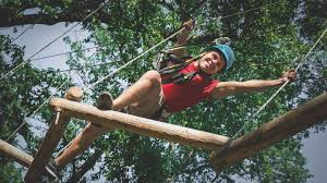 tickets bronx zoo treetop adventure