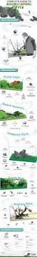 Aquascaping by 25 Best Aquascaping Ideas On Pinterest Aquarium Ideas Aquarium