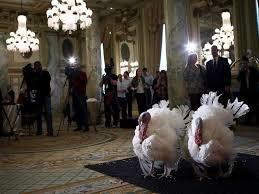 president obama pardons thanksgiving turkeys for the last time