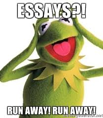 Kermit Meme Generator - essays run away run away kermit meme meme generator