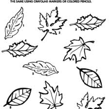 fall tree coloring sheet best of trees without leaves coloring