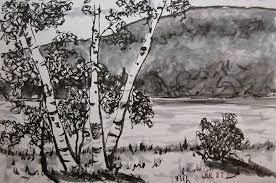hudson valley sketches birch trees at north lake