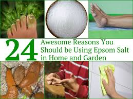 24 awesome reasons you should be using epsom salt in home and garden