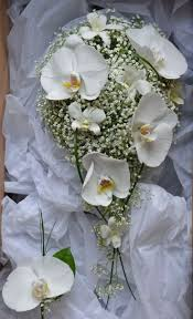 Wedding Flowers M Amp S Best 25 Gypsophila Wedding Bouquet Ideas On Pinterest