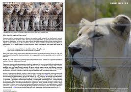 live encounters chris mercer u2013 on canned hunting in south africa
