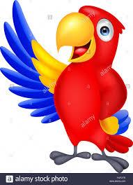 pet bird cartoon colorful gesture profile blue beautiful