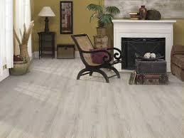 island driftwood best floor for dogs
