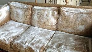 nettoyer pipi de chien sur canapé nettoyer pipi de chien sur canap best comment retapisser un canap