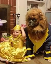 Charlie Brown Snoopy Halloween Costumes 25 Pet Costumes Ideas Pet Halloween Costumes