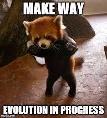Humans Meme - animals to humans memes imgflip