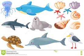 different types of sea animals stock vector image 81166463