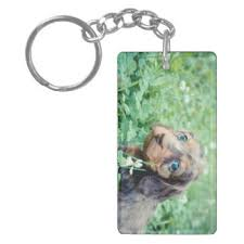 keepsake keychains dog keepsake keychains zazzle