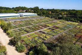 Gardens With Summer Houses - hampshire home with summer house barn and thriving garden nursery