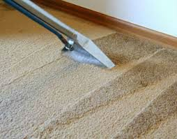 What Carpet To Choose Local Residential And Commercial Carpet Shampooing
