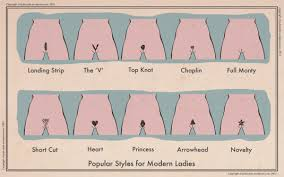what is the latest pubic hair style popular styles for modern ladies pubicstyle hairstyles ideas