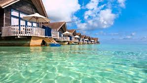 yellow pages bahamas your guide to island