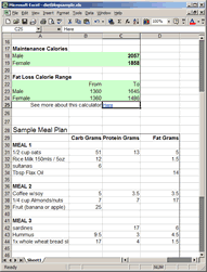Diet Tracker Spreadsheet How To Your Own Diet Plan