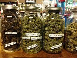 buy edible cannabis online buy online we supply marijuana and edibles