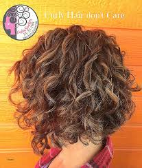 angled curly bob haircut pictures angled bob hairstyles unique naturally curly bob with balayage high