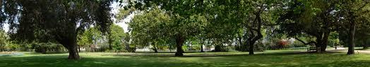 Geelong Botanic Gardens by Colac Botanic Gardens