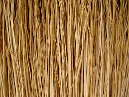 Best Broom For Laminate Floors Free Images Texture Floor Macro Agriculture Background