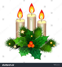 christmas candles fir branches holly berries stock vector