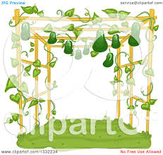 clipart of a garden trellis with gourds growing and hanging
