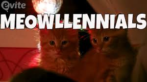cute kittens acting like funny millennials national cat day