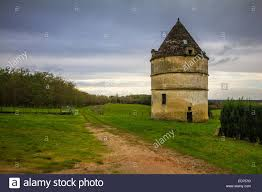 farm landscape with tower house in sauterne france stock photo