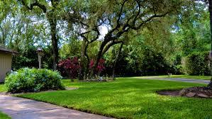 the lawn lady u2014 beautiful lawns it u0027s what we do