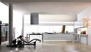 kitchen designs purple kitchen cabinets kitchen designs with