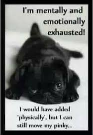 Exhausted Meme - exhausted memes pinterest exhausted and memes