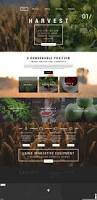 Business Web Design Homepage by Top 25 Best Web Design Company Ideas On Pinterest Web Design