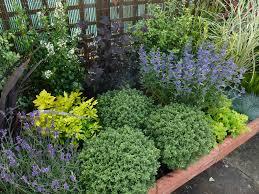 Shrub Garden Ideas Plants For Low Maintenance Garden Acres Farm