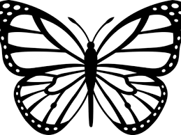 free butterfly drawings free clip free clip on