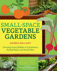 Small Vegetable Garden by Vegetable Garden Ideas For Small Spaces Home Outdoor Decoration