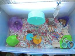 Petsmart Hamster Cages Proud Of Your Hamsters Cage Page 591 Supplies U0026 Accessories