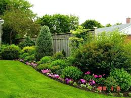 Privacy Garden Ideas Landscape Design Ideas For Privacy Best Landscaping Along Fence