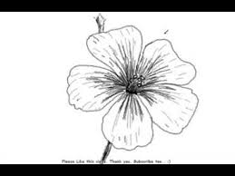 how to draw beautiful drawing how to draw a beautiful and simple flower