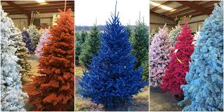colorful trees tree trends