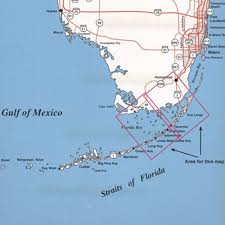 Key West Florida Map by Amazon Com Top Spot Map N207 Upper Keys Area Outdoor