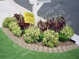 Designing Flower Beds Best 25 Mailbox Landscaping Ideas Only On Pinterest Sidewalk