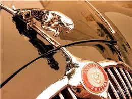 teki 25 den fazla en iyi jaguar car symbol fikri