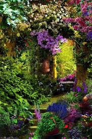 best 25 secret gardens ideas on pinterest dream garden my