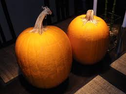 turkey pumpkins turning into a pumpkin or a turkey dc rainmaker