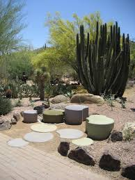 Desert Landscape Ideas For Backyards Awesome Desert Landscaping Ideas With Lovely Desert Plants Amaza
