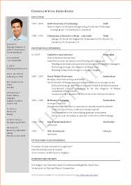 1 page resume template 11 sample one page resume skills based resume