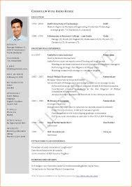1 page resume template 11 sample one page resume skills based resume