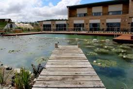 Natural Swimming Pool Biotop Your Expert For Natural Pools And Living Pools